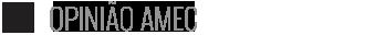 tt-ic-fatos-relevantes-opiniao-amec-v06